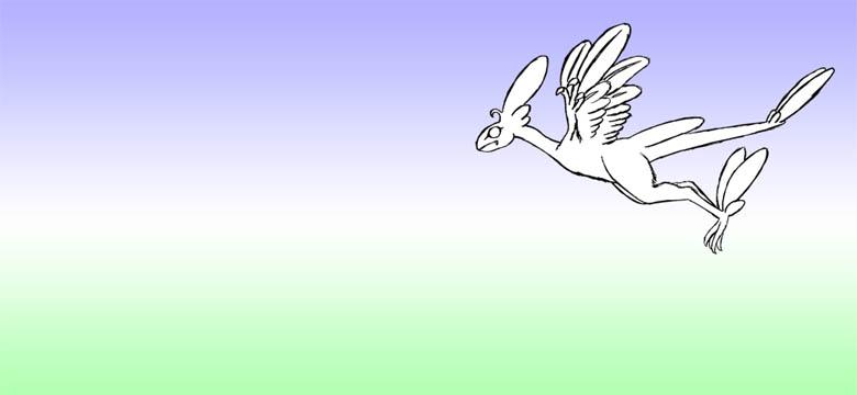 羽ばたき2-1