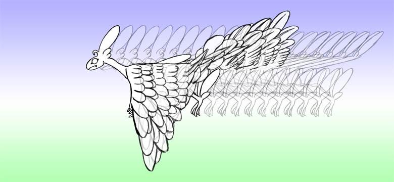 羽ばたき2-11