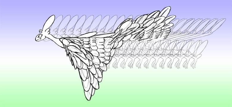 羽ばたき2-13