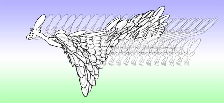 羽ばたき2-14