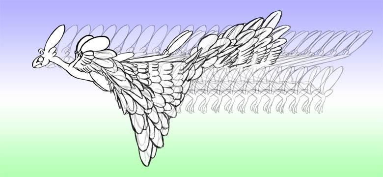 羽ばたき2-15