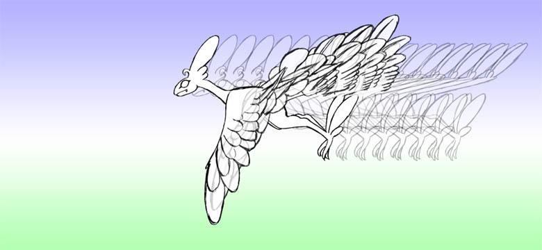 羽ばたき2-8