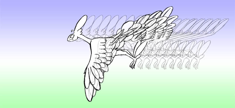 羽ばたき2-9