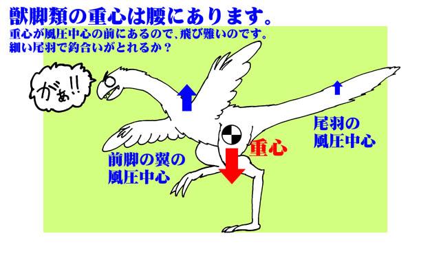 獣脚類の重心